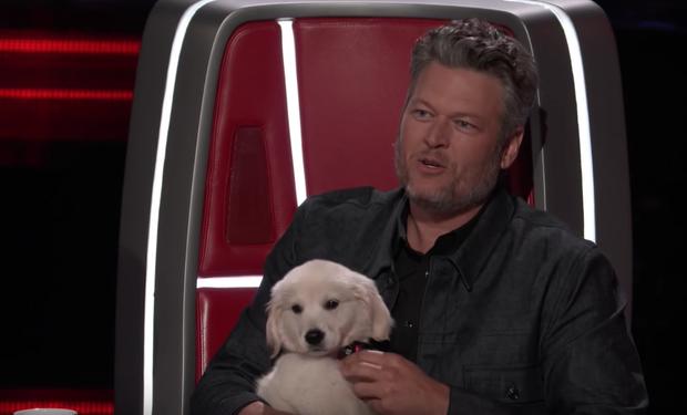 The Voice US: Blake Shelton đưa một chú cún cực yêu ra đối đầu với Nick Jonas - Ảnh 8.