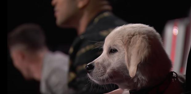 The Voice US: Blake Shelton đưa một chú cún cực yêu ra đối đầu với Nick Jonas - Ảnh 12.