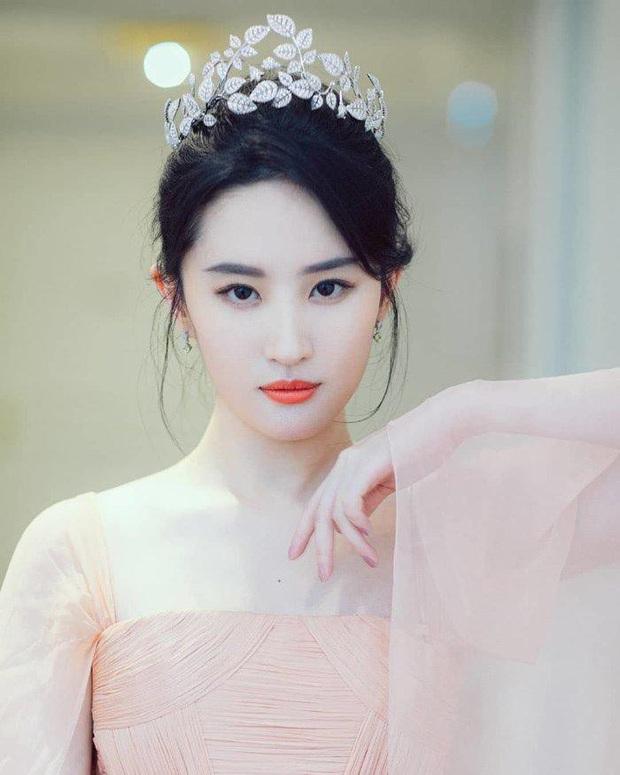 8 minh tinh là hoa khôi nức tiếng Học viện Điện ảnh Bắc Kinh: Triệu Vy, Lưu Diệc Phi là huyền thoại, Dương Mịch thành tích quá khủng - Ảnh 3.