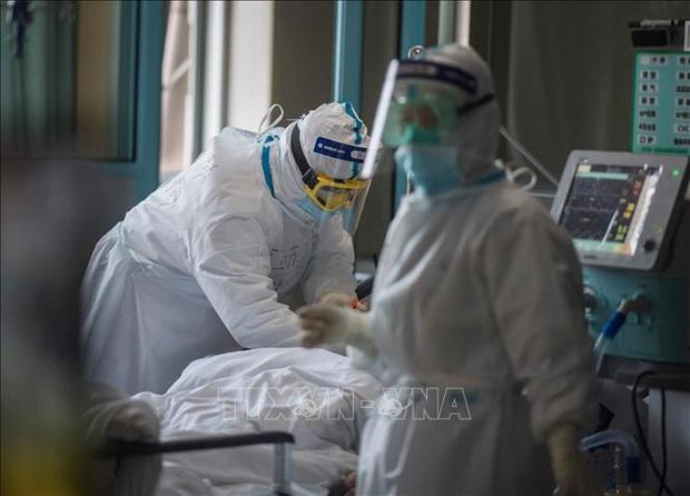 WHO cử chuyên gia tới Iran hỗ trợ chống dịch COVID-19 - Ảnh 1.