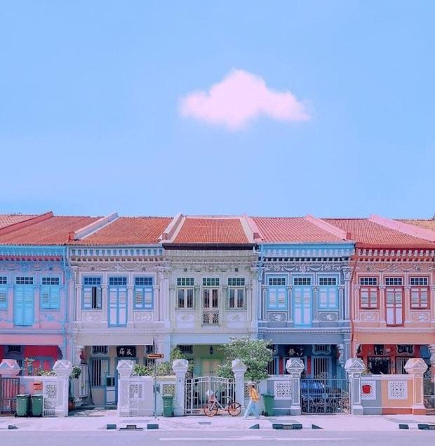 """Vừa phát hiện con phố 7 sắc cầu vồng cực hiếm người biết ở Singapore, hình sống ảo cứ tăng dần đều mỗi ngày vì background quá """"xịn"""" - Ảnh 4."""