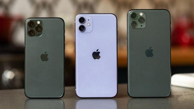 iPhone quẩy tung nóc 2019: Vơ trọn 5 vị trí top smartphone hot nhất thế giới, không cho người khác buôn bán gì cả - Ảnh 2.