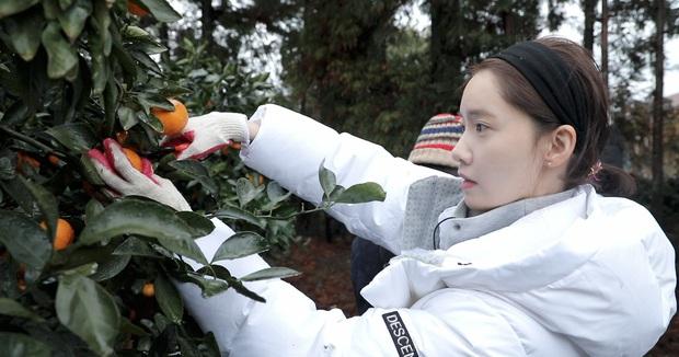 Yoona vừa bật mí 2 chiêu skincare giúp cô tút tát làn da mộc đẹp bất bại, đáng nói là chị em nào cũng áp dụng được - Ảnh 1.