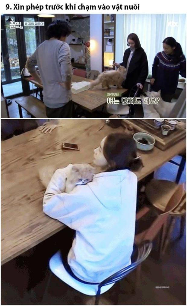 Không chỉ xinh đẹp mà Yoona (SNSD) còn thực sự tốt bụng và luôn quan tâm đến người khác - Ảnh 7.