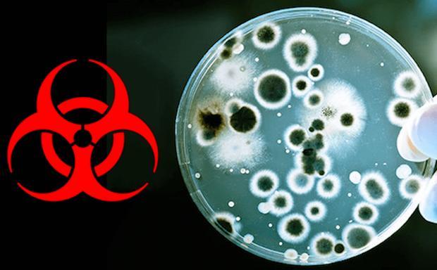 Nhà khoa học Vũ Hán: Trung Quốc không chế tạo và thêm HIV vào virus corona, đây là sự trừng phạt của thiên nhiên - Ảnh 1.