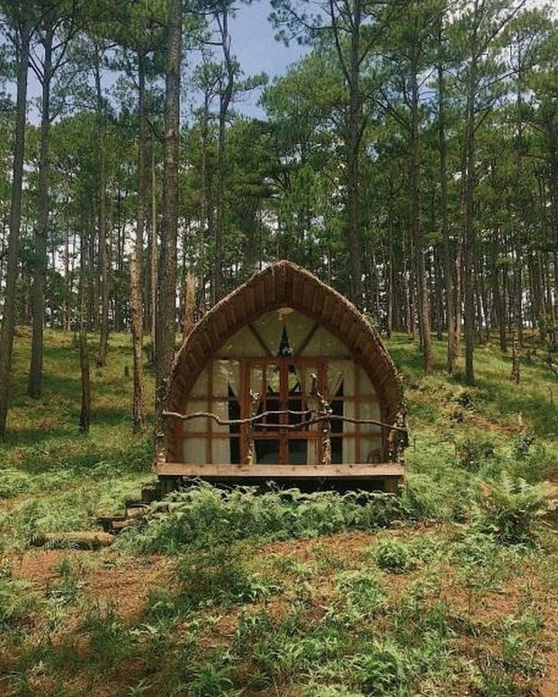"""3 homestay không mới nhưng vô cùng lạ lẫm giữa """"rừng"""" homestay ở Đà Lạt khiến bạn đã ở một lần rồi sẽ lưu luyến mãi không quên - Ảnh 1."""