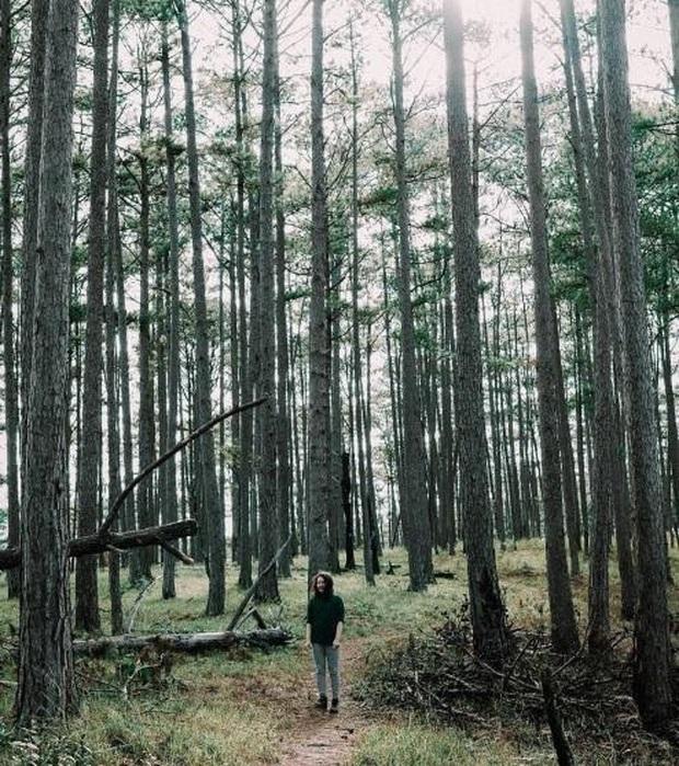 """3 homestay không mới nhưng vô cùng lạ lẫm giữa """"rừng"""" homestay ở Đà Lạt khiến bạn đã ở một lần rồi sẽ lưu luyến mãi không quên - Ảnh 2."""