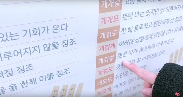 """Dàn sao Bố Già bỗng đồng loạt """"ném gỗ lên trời"""" trong vlog mới của Hari Won, hoá ra là chơi một trò bói đặc biệt của Hàn Quốc - Ảnh 3."""