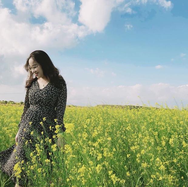 Dân mạng sửng sốt trước cánh đồng hoa cải vàng đẹp như tranh vẽ có thật tại Đà Lạt, xem ảnh mà ngỡ đâu nước Nhật xa xôi - Ảnh 9.