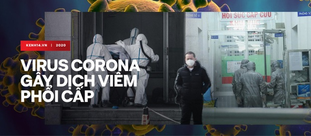 Phạt cô gái Hải Phòng 10 triệu vì tung tin người Trung Quốc lăn ra công ty do virus corona - Ảnh 3.