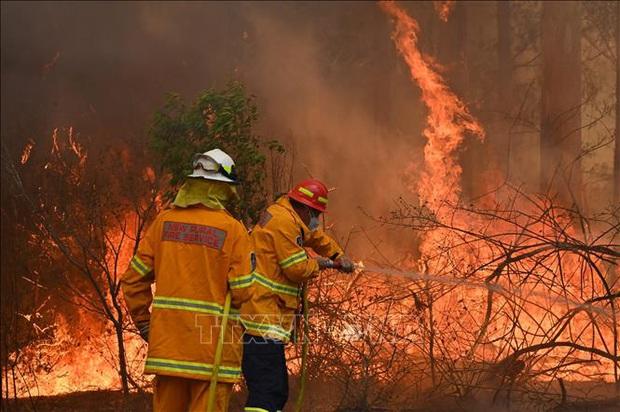 Australia cùng lúc đối mặt với cháy rừng, lũ lụt và bão - Ảnh 1.