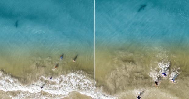 Tập lái drone trên bãi tắm, cậu bé hoảng hồn chứng kiến hung thần biển cả bơi sát du khách chỉ vài mét - Ảnh 3.