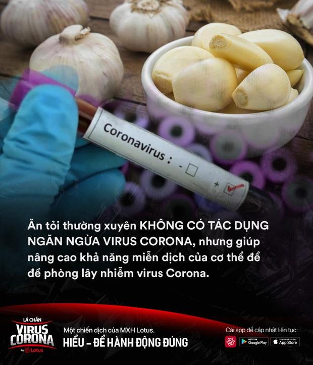 Công dụng của tỏi sống đối với sức khoẻ là gì? Ăn tỏi sống có phòng ngừa lây nhiễm virus Corona hay không? - Ảnh 4.