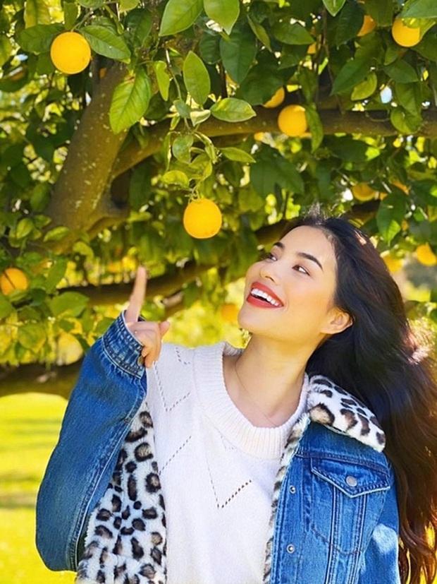 Hé lộ góc vườn đầy bất ngờ bên trong biệt thự triệu đô của Phạm Hương ở Mỹ: Lý do Hoa hậu từ bỏ showbiz là đây? - Ảnh 2.