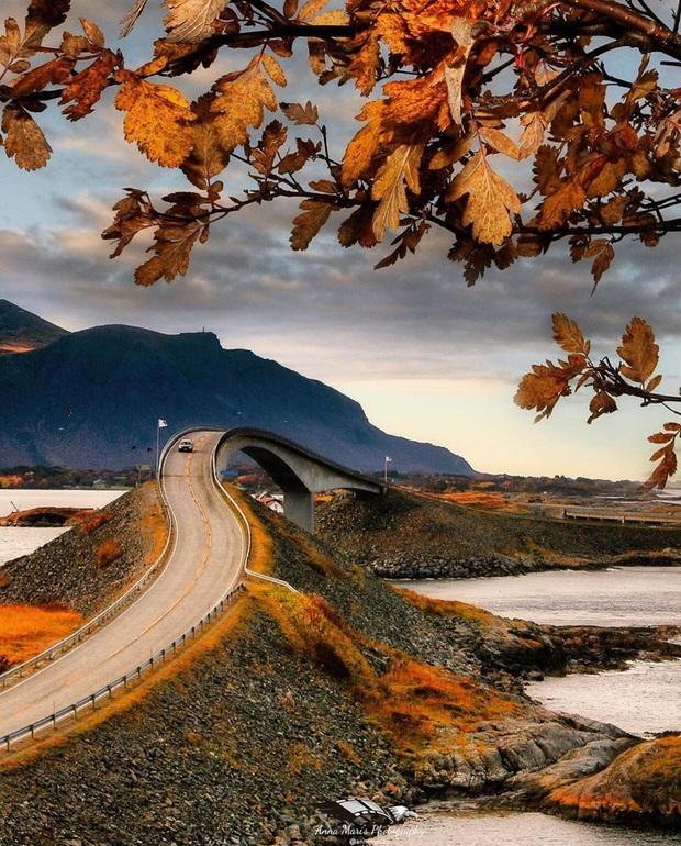 """Chiêm ngưỡng cung đường vượt biển """"huyền thoại"""" đẹp nhất hành tinh ở Na Uy, ước mơ trong đời của biết bao phượt thủ thế giới - Ảnh 4."""