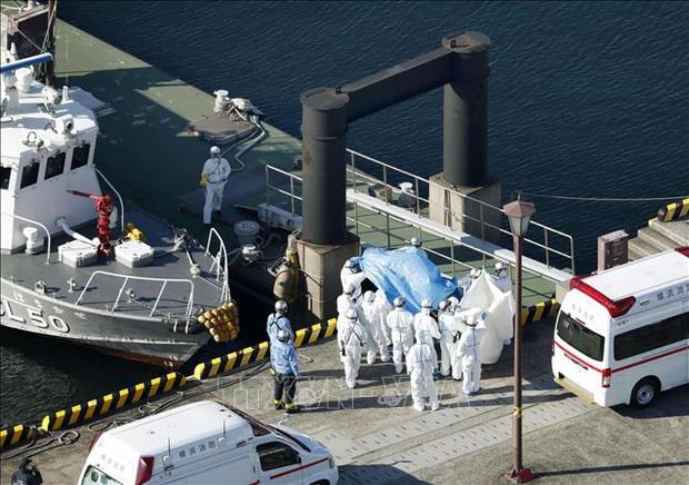 Thêm 2 trường hợp nhiễm nCoV trên du thuyền Diamond Princess - Ảnh 1.