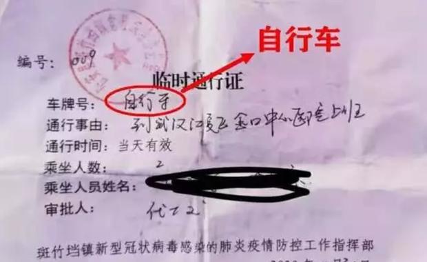 Câu chuyện xúc động: Nữ bác sĩ không ngại khó khăn, một mình đạp xe hơn 300km để trở về Vũ Hán cứu chữa bệnh nhân - Ảnh 2.