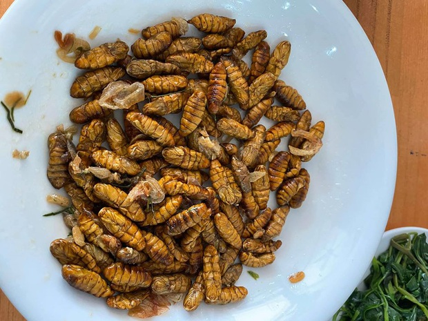 Mê mẩn một món đặc sản có nguồn gốc từ côn trùng ở Việt Nam, anh chàng nước ngoài đăng đàn hỏi tên để mua lại cho bằng được - Ảnh 2.