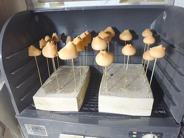 Kêu gào không nỡ ăn chiếc bánh Mochi vì quá đáng yêu, cư dân mạng mới ngỡ ngàng nhận ra đây chỉ là...vật trang trí - Ảnh 5.