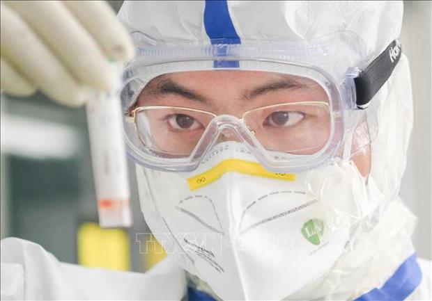 Các nhà khoa học tìm ra điểm yếu của virus SARS-CoV-2  - Ảnh 1.