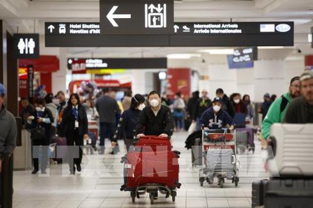 Bộ Y tế phát thông báo khẩn tìm kiếm hành khách trên 7 chuyến bay có ca nhiễm Covid-19 - Ảnh 1.
