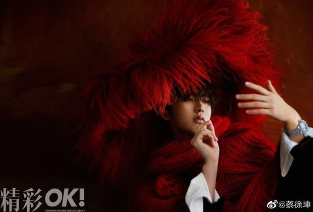 Nam thần được fan Trung, Hàn, Việt tích cực đẩy thuyền với em út Lisa (BLACKPINK) là ai: Nhìn profile đúng là không vừa! - Ảnh 10.