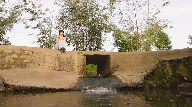 Mục sở thị bất động sản chục ngàn mét vuông của sao Việt: Toàn để trồng rau nuôi cá, Lý Nhã Kỳ có khu đất như nông trại - Ảnh 12.