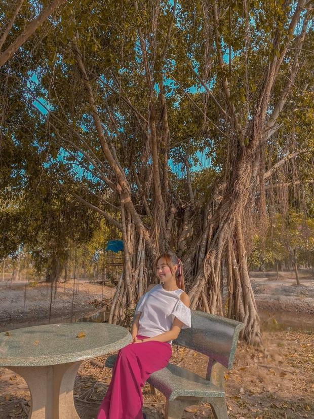 Mục sở thị bất động sản chục ngàn mét vuông của sao Việt: Toàn để trồng rau nuôi cá, Lý Nhã Kỳ có khu đất như nông trại - Ảnh 9.