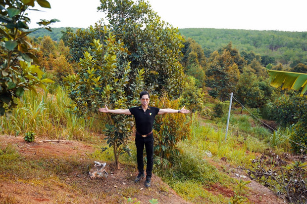Mục sở thị bất động sản chục ngàn mét vuông của sao Việt: Toàn để trồng rau nuôi cá, Lý Nhã Kỳ có khu đất như nông trại - Ảnh 2.
