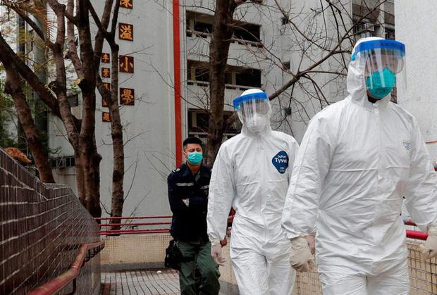 Hồng Kông: Tìm thấy virus SARS-CoV-2 trong đường ống chung cư - Ảnh 1.