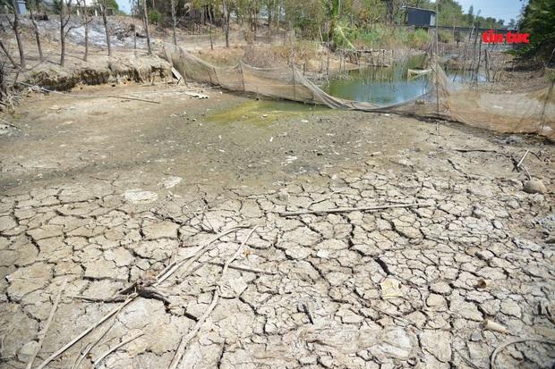 Cận cảnh hạn mặn khốc liệt nhất lịch sử ở Tây Nam Bộ - Ảnh 1.