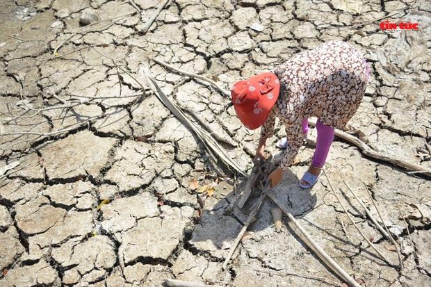Cận cảnh hạn mặn khốc liệt nhất lịch sử ở Tây Nam Bộ - Ảnh 2.