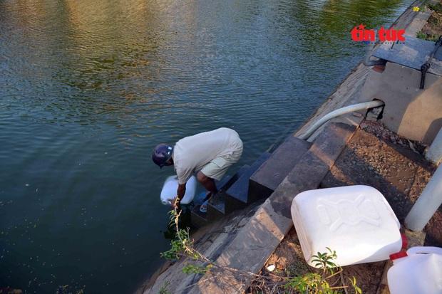 Cận cảnh hạn mặn khốc liệt nhất lịch sử ở Tây Nam Bộ - Ảnh 10.