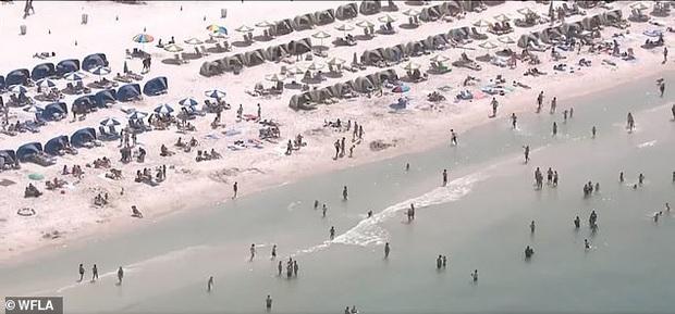 Bất chấp dịch COVID-19, bãi biển Florida vẫn chật kín người  - Ảnh 2.