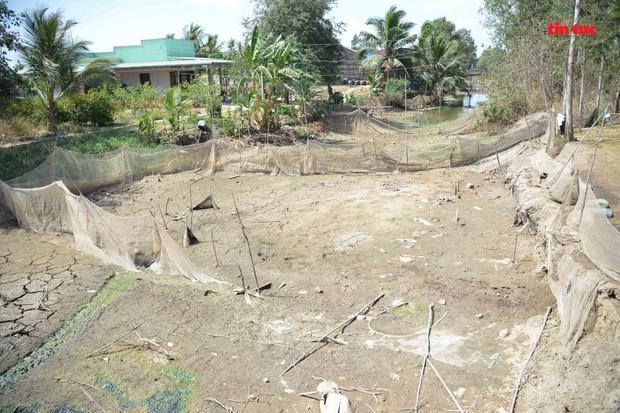 Cận cảnh hạn mặn khốc liệt nhất lịch sử ở Tây Nam Bộ - Ảnh 4.