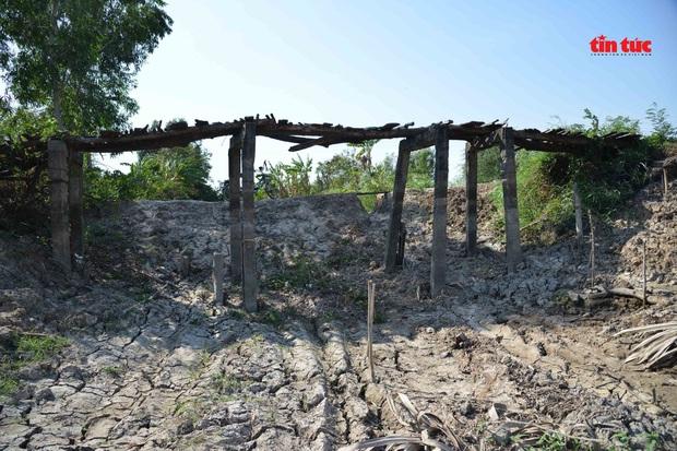 Cận cảnh hạn mặn khốc liệt nhất lịch sử ở Tây Nam Bộ - Ảnh 6.