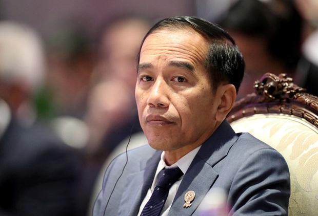Tổng thống Indonesia công bố 2 ca nhiễm COVID-19 đầu tiên - Ảnh 1.