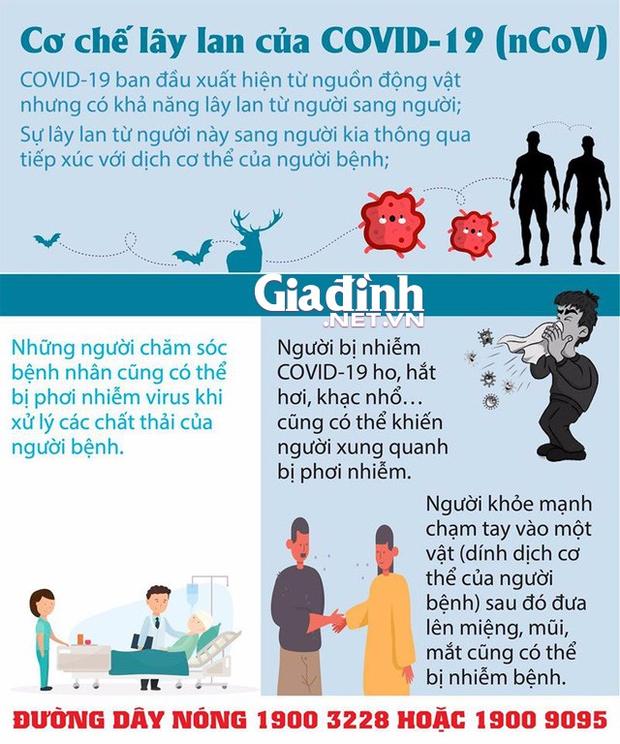 Hi hữu: Chú rể cùng 30 người thân được đưa đi xét nghiệm COVID-19 trước lễ cưới - Ảnh 3.