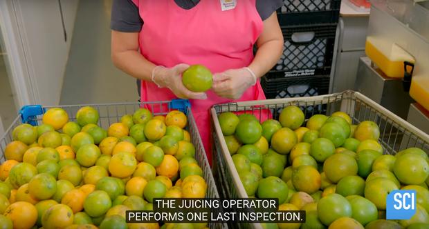 """Cận cảnh quy trình làm nước cam vắt trong nhà máy công suất lớn, cực đã mắt với công đoạn """"nghiền nát"""" quả cam mọng nước - Ảnh 8."""