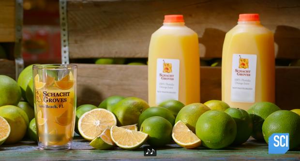 """Cận cảnh quy trình làm nước cam vắt trong nhà máy công suất lớn, cực đã mắt với công đoạn """"nghiền nát"""" quả cam mọng nước - Ảnh 12."""