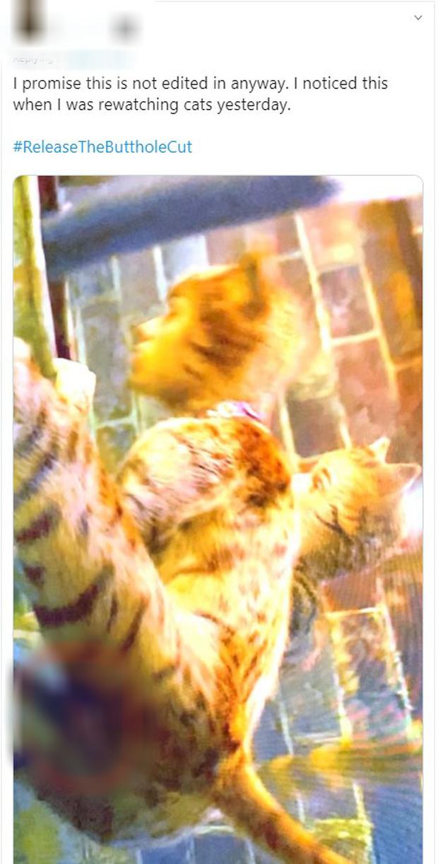 Lên tiếng đính chính, NSX Cats cứ như quảng bá thêm cho phiên bản nhạy cảm? - Ảnh 5.