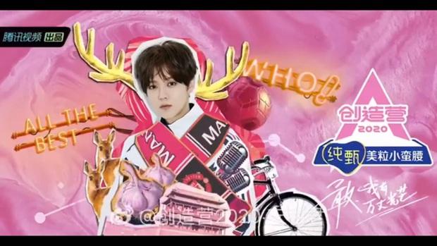 Produce 101 bản Trung quy tụ toàn cựu gà nhà SM, đối đầu với show thực tế có Lisa làm giám khảo - Ảnh 3.