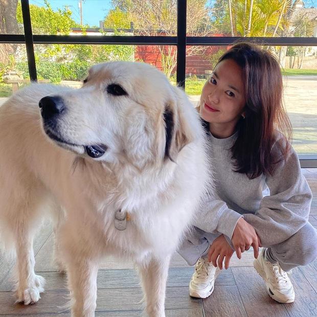 1 tháng trở về từ tâm dịch nước Ý, Song Hye Kyo cuối cùng đã lộ diện với nhan sắc thật gây xôn xao và dấu hiệu đáng mừng - Ảnh 2.