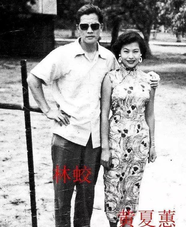 Thảm họa thẩm mỹ Hong Kong Hoàng Hạ Huệ: Cả đời chiêu trò, dao kéo níu kéo đại gia và cái kết bất ngờ tuổi xế chiều - Ảnh 4.