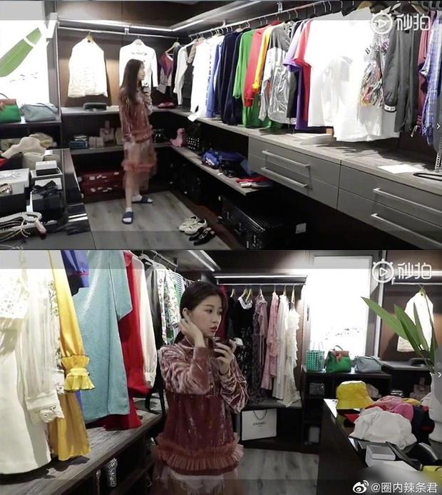 Hé lộ căn hộ Thượng Hải siêu sang của Thánh lố Ngu Thư Hân: Ngập tràn hàng hiệu, không khác gì trung tâm mua sắm - Ảnh 4.