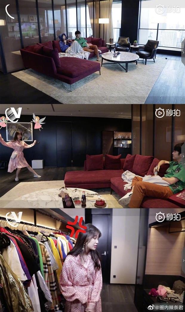 Hé lộ căn hộ Thượng Hải siêu sang của Thánh lố Ngu Thư Hân: Ngập tràn hàng hiệu, không khác gì trung tâm mua sắm - Ảnh 5.