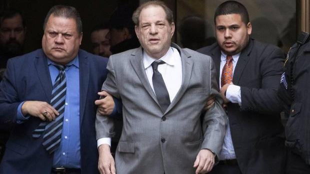 Trùm Hollywood nghiện sex Harvey Weinstein dương tính với COVID-19, cách ly trong trại giam sau khi bị tuyên án 23 năm tù - Ảnh 3.