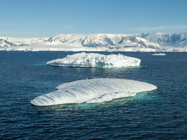 Đi tìm minh chứng về biến đổi khí hậu tại Nam Cực bằng một chiếc iPhone - Ảnh 2.