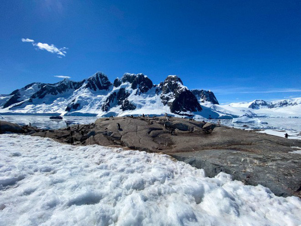 Đi tìm minh chứng về biến đổi khí hậu tại Nam Cực bằng một chiếc iPhone - Ảnh 8.