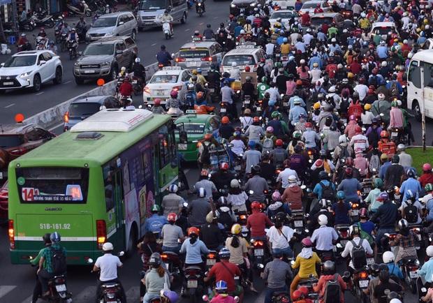 Sở Y tế TP.HCM đề xuất ngưng chạy xe buýt để phòng chống dịch Covid-19 - Ảnh 1.